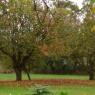 Petite contribution au bilan sur les jardins